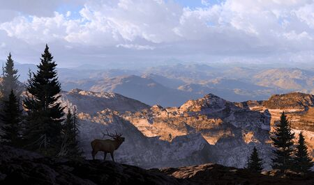 A silhouetted elk looking into the distance mountains in the morning sunlight.  Stock Photo