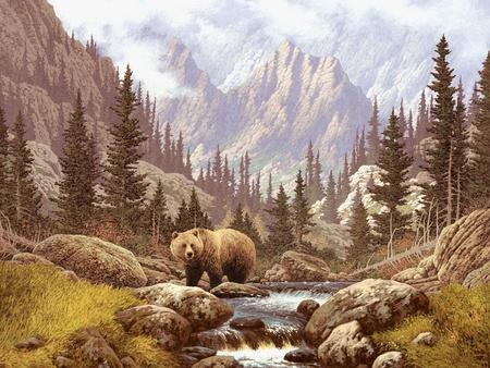oso pardo: Una escena de paisaje de un oso en las monta�as rocosas.