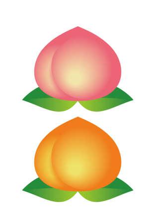 桃と黄桃白の分離