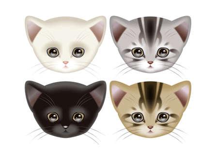 Cats on white Banco de Imagens