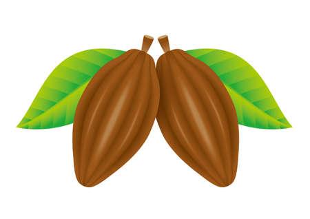 Gousses de cacao. Banque d'images - 31601742