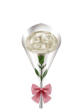 Carnation bouquet. photo