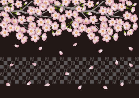 bloom: Background pattern of cherry tree. Cherry bloom at night.