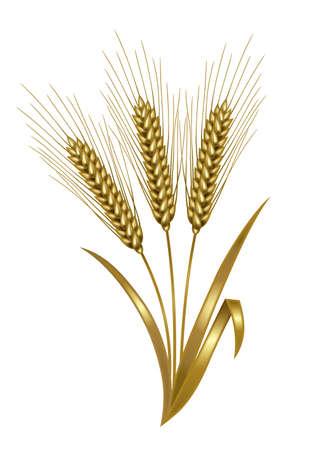 Illustratie van tarwe. Metallic goud.
