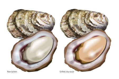 Illustratie van oesters.