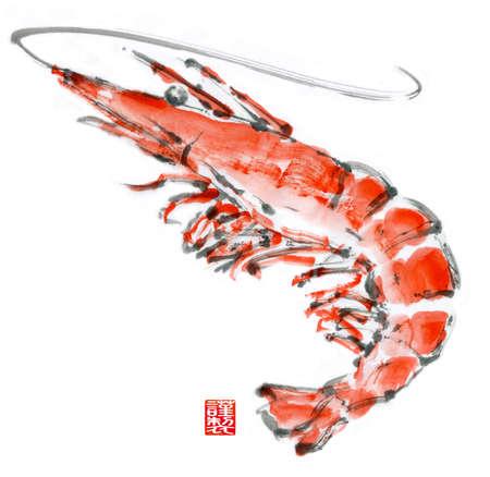 Illustration of shrimp. Watercolor painting. Banco de Imagens