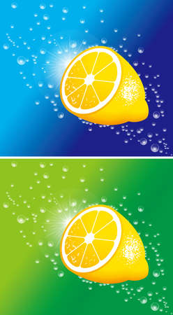 Illustration of lemon. Vector. Ilustração