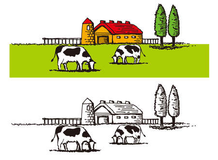 Illustration of the dairy farming. Ranch landscape.