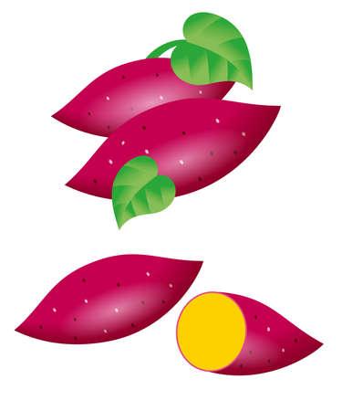 Illustration of sweet potatoes. Icon set.