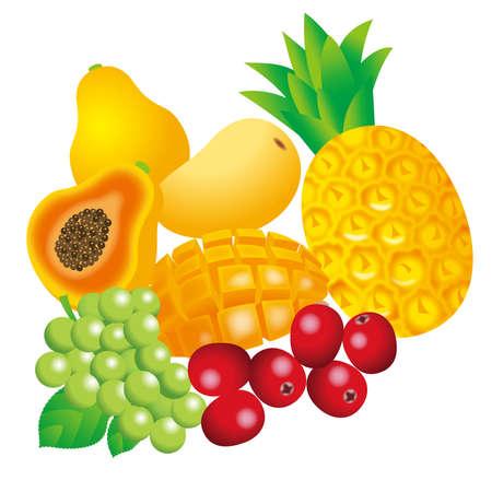 Illustration of fruit background. Tropical fruits.