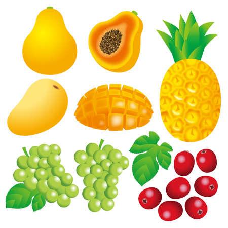 Illustration of fruit icon set.