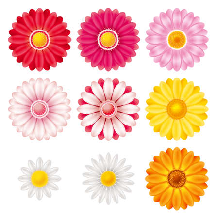 The 3D illustration of the flower. An icon set. Stock Photo