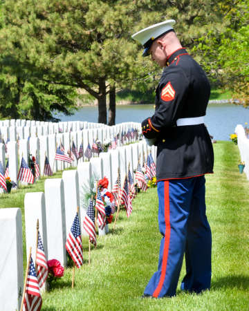 a memorial to fallen soldiers: Marine in Full Uniform Paying Tribute at the Graves of his Fellow Soldiers on Memorial Day