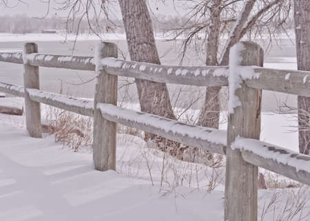 Snowy Split Rail Fence and Tree By The Icy Lake