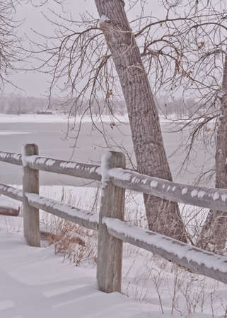 Snowy Log Fence and Tree By The Icy Lake Stock Photo