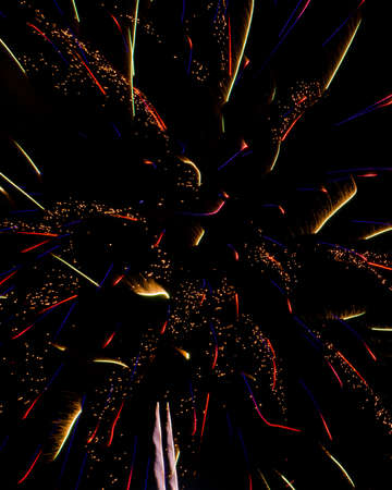 squiggles: Multi Colored Firework Sparks  Squiggles