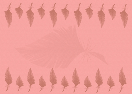 Feathers on pastel pink background photo