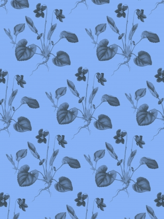 Violas Pattern with blue  background photo