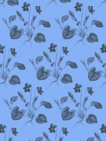 violas: Violas Pattern with blue  background