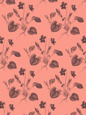 violas: Violas Pattern with pink background