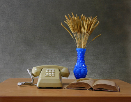 button grass: still life with Push Button Telephonevase of flowering grass and old book on wooden table.