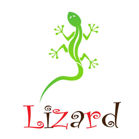 Lizard Stock Vector - 12498117