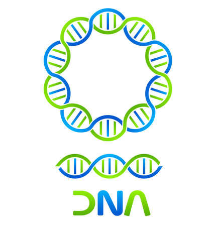 genetic modification: DNA Strand y sin costura