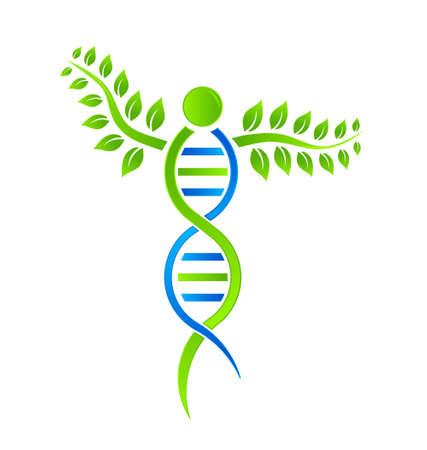 Plante à ADN Banque d'images - 19059626