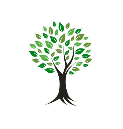 family tree: Tree plant image Concept of strength, antiquity,good fortune  Vector icon