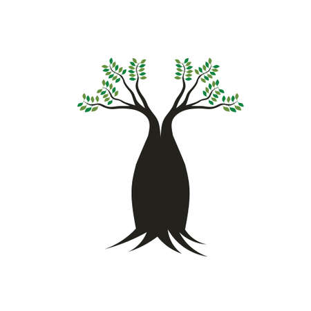 australia landscape: Boab tree image  Concept of mother tree, robust,stable, strong