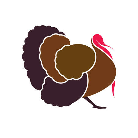Turkey for thanksgiving day. Vector