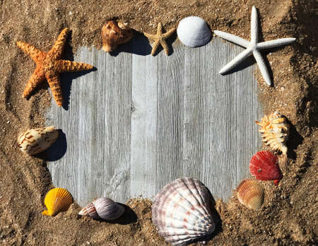 Sand Frame with Sea Shells in wooden Planks Photo. Concept for a Marine Food Business Archivio Fotografico