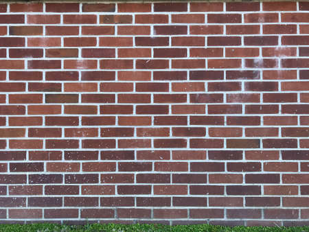 Brick wall with grass. Photo image