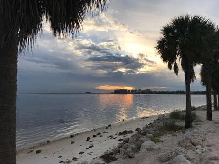 Palm trees on Miami Beach at sunset, Florida. Photo image Stok Fotoğraf
