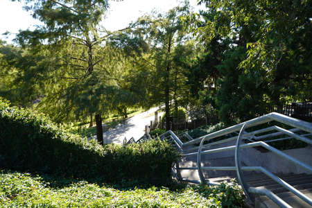 Stairs to Trails in Houston Texas Buffalo Bayou Park Landscape Photo Image
