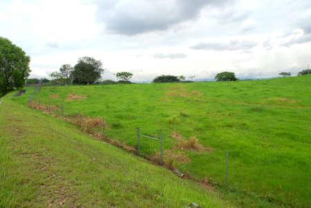 greengrass: green farms,greengrass,fenceup green farm,green land.