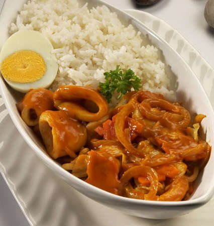 jap curry,spicy squid with white rice,