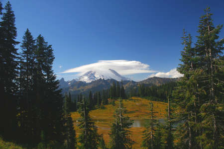 capped: A snow capped Mt. Rainier in Washington State.