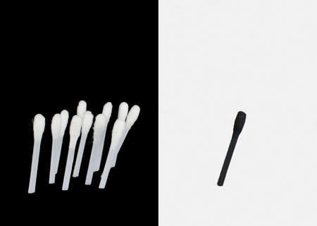 seperation: Racism  Cotton Buds Depicting Racism Black & White Isolated Stock Photo
