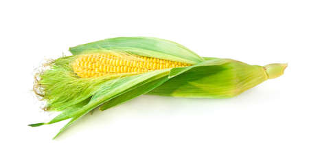 corn kernel: Uncovered green raw corn on white background