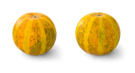 september 2: Two small pumpkins on white background Stock Photo
