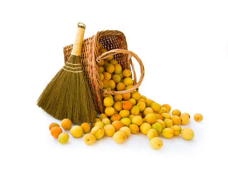 Basket with small apricots and broom on white background photo