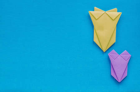 typical: colorful origami swimsuits on blue textures background