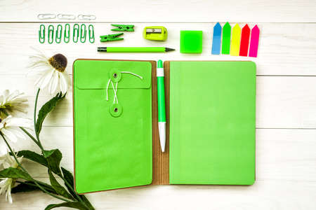 set of green fashion and stylish stationary top view Фото со стока