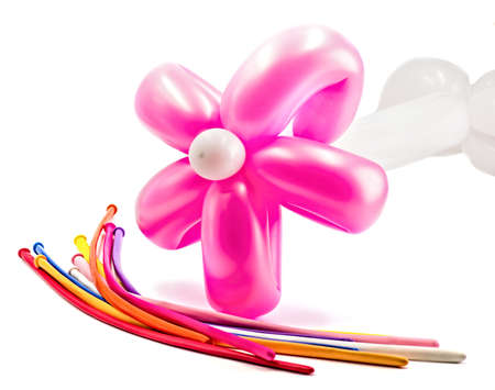 bright pink balloon flower isolated on white background