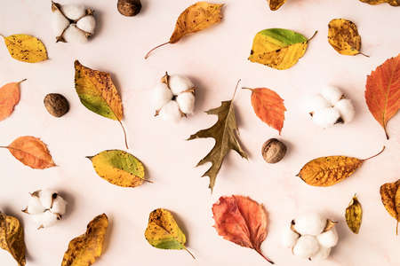 Autumn concept. Autumn composition. Cotton, autumn leaves and holly leaves scattered on white marble background. Flat lay, top view Reklamní fotografie