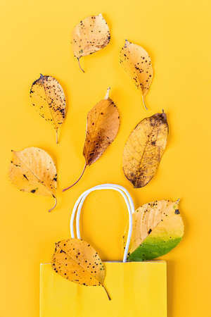 Autumn composition. Paper bag with autumn yellow dried leaves on bright solid background. Flat lay, top view Reklamní fotografie