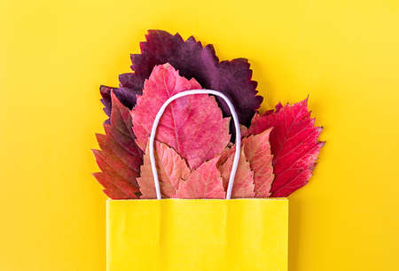 Autumn composition. Yellow paper bag with red autumn leaves on bright solid background. Flat lay, top view Reklamní fotografie