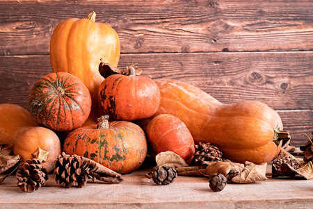 Halloween concept. Ripe pumpkins with dry leaves and pine cones on wooden background