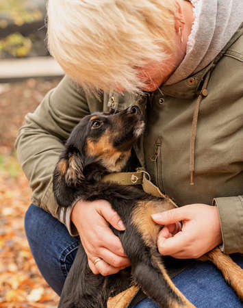Pet care concept. Woman hugging her mixed breed dog in an autumn park